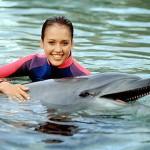 Les Nouvelles aventures de Flipper le dauphin