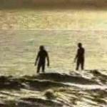 Surfers Détectives
